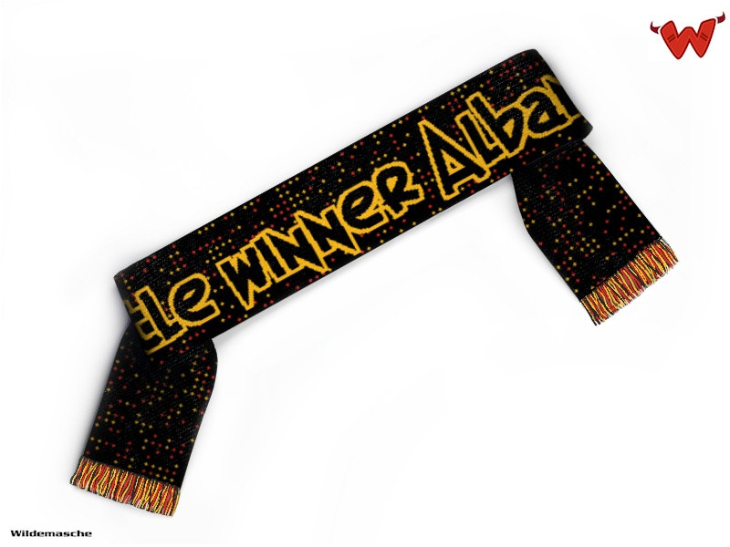 title winner albany scarf
